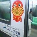 金魚電車!