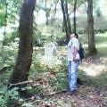 三条大崎山で昆虫採集