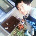 カブトムシの餌交換