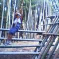 竹アートでターザン