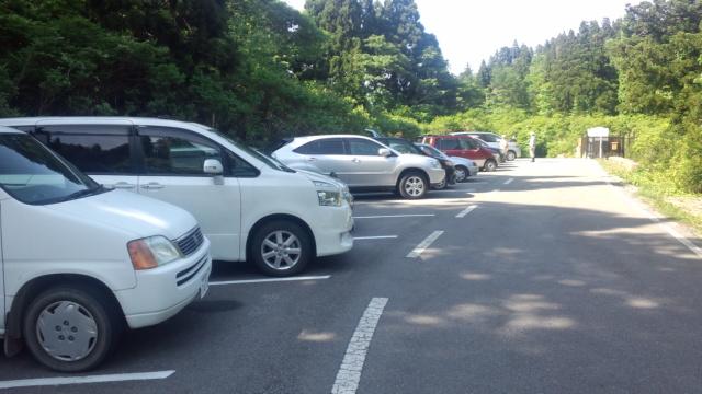 佐渡・天然杉の遊歩道