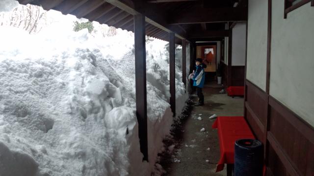 今年は雪が多いようです